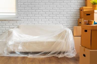 Punaises de lit traitement par congélation Traitement des Punaises de lit par congélation Mulhouse